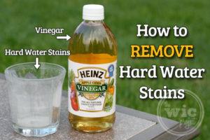 Get to Know Me! (Vinegar) – Bellingham Cohousing